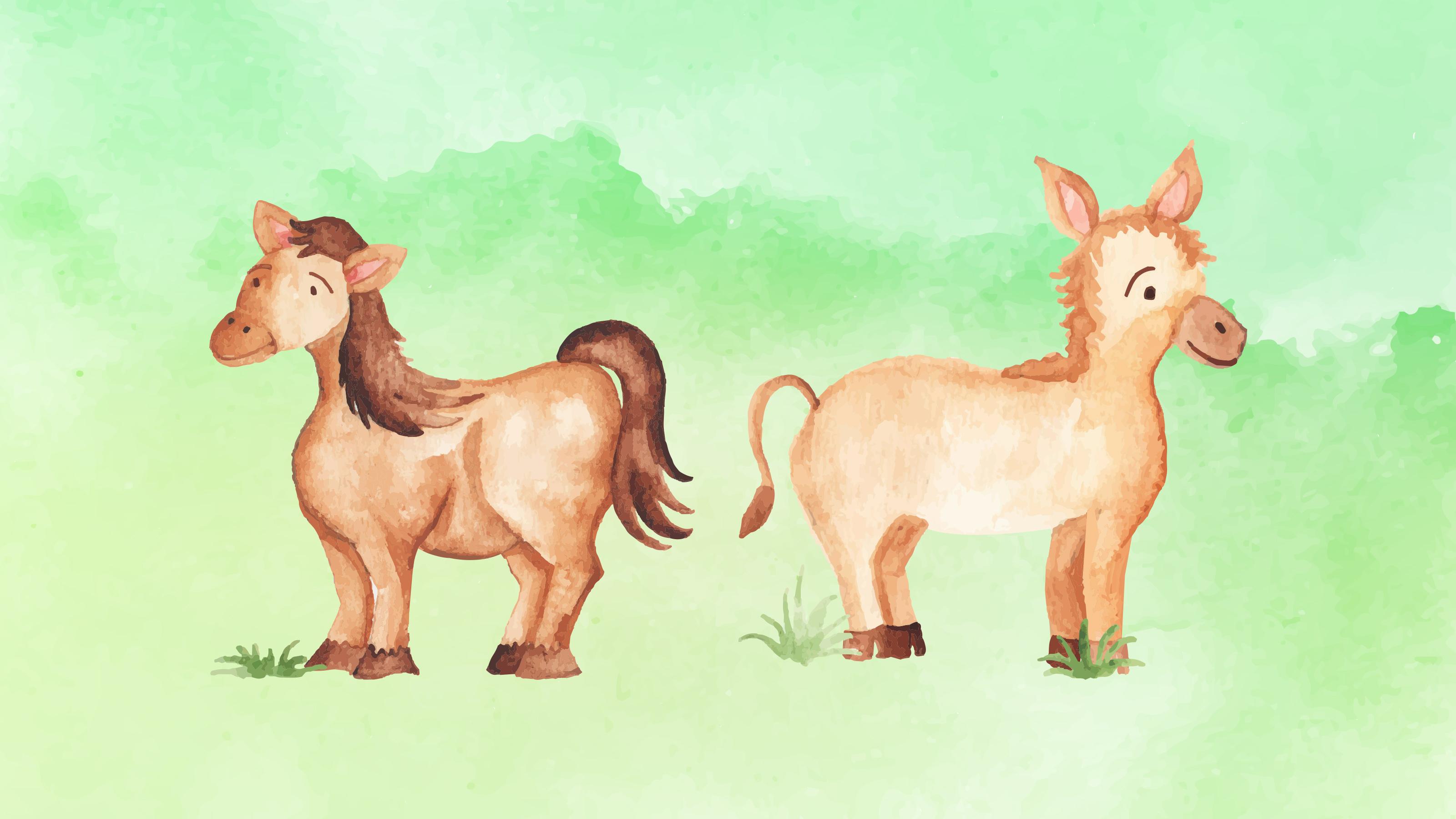 雲講堂-【英語繪本說故事】馬與驢子